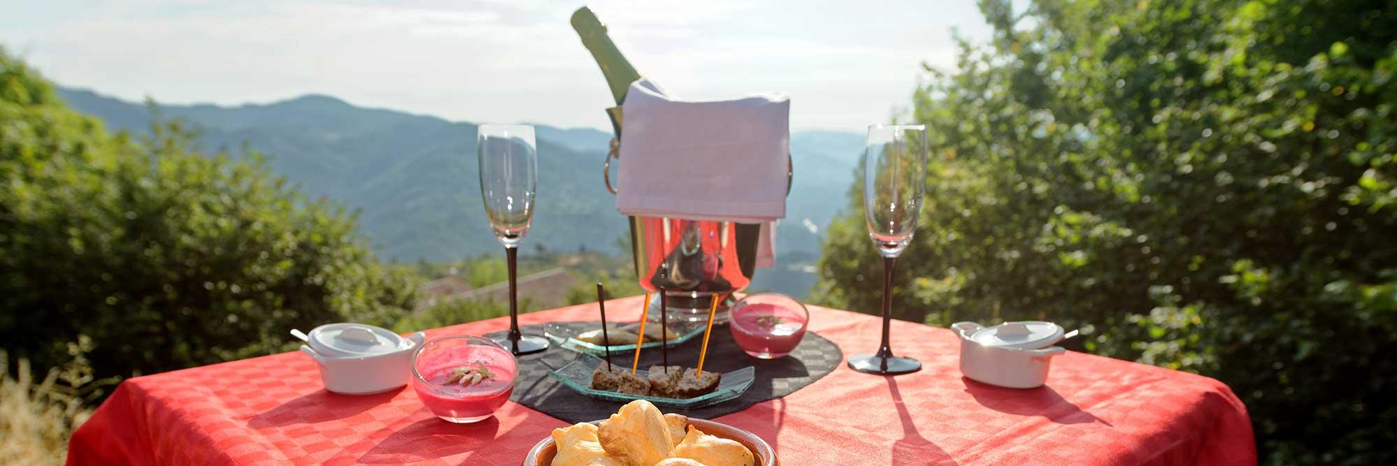 Table d'hôte insolite avec apéritif face au Vecors Savoie, suisse, genève